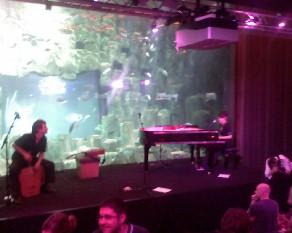 soir 233 e yahoo dans un aquarium